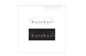 BACCHUS_manuál2